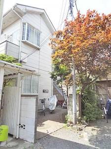 palette_tamagawa_build